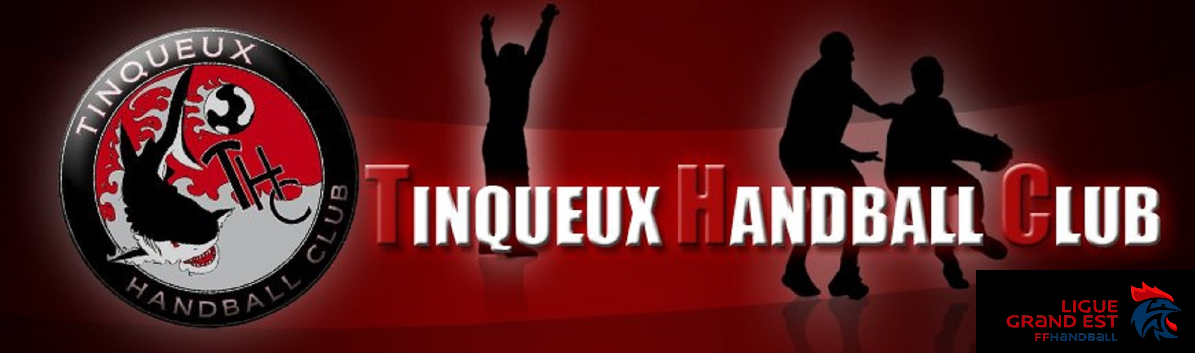 Tinqueux handball club